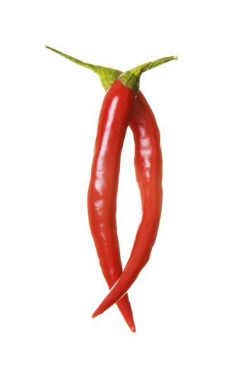 Two red chili peppers. Isolated on white.