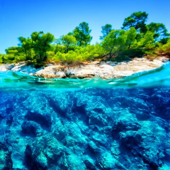 Beauty of tropical nature, blue transparent water around green exotic island, wonderful undersea life, summer vacation concept