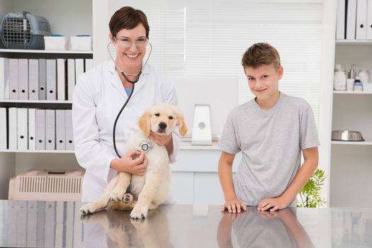 Vet examining a dog with its owner in medical office