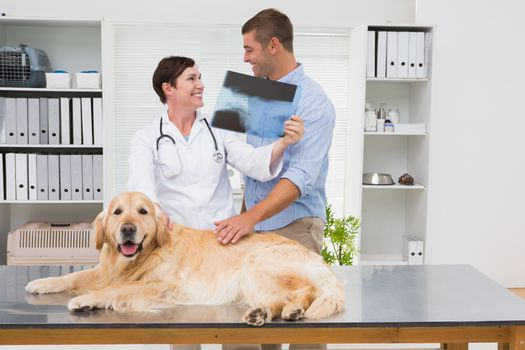 Veterinarian showing x-ray to dog owner in medical office