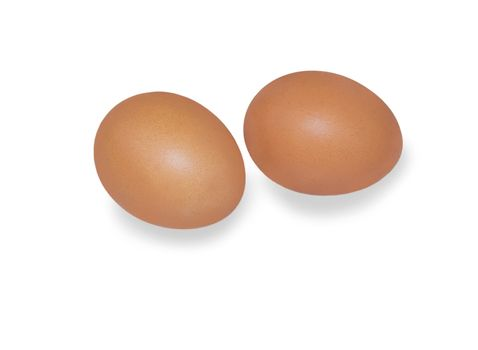 eggs. For your commercial and editorial use