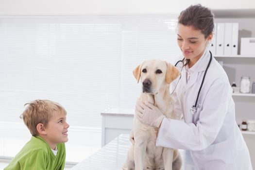 Smiling vet examining a dog with its owner in medical office