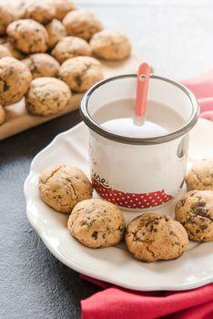Homemade mini cookies with chocolate milk, selective focus