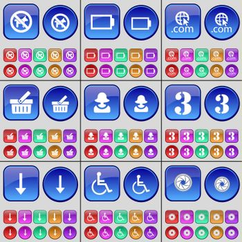 No pets allowed, Battery, Domain, Basket, Avatar, Three, Arrow down, Disabled person, Lens. A large set of multi-colored buttons. illustration