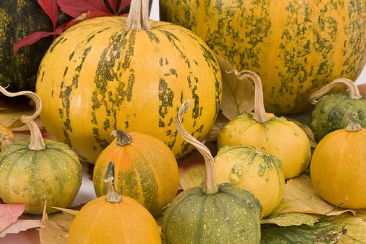 Fall leaves and pumpkins, autumn background