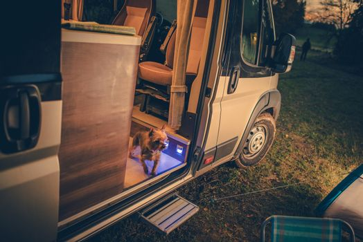 Dog in the Camper Van. Rving with Pets Concept Photo. Camping Scenery After Sunset.