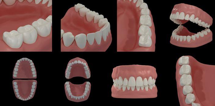 3D render teeth on black background