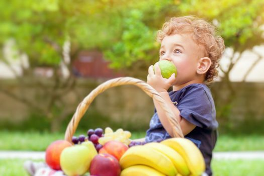 Portrait of a cute little boy sitting on the green grass field in a park and with pleasure eating tasty juicy apple, healthy babies nutrition