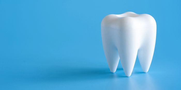 Dental concept healthy equipment  tools dental care Professional  banner