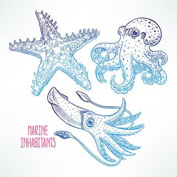 set of beautiful cute sea animals. hand-drawn illustration