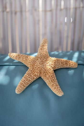 Closeup Photo of a Beautiful Big Starfish in the Beach Chalet. Exotic Beach Resort. Vacation in Paradise. Summer Vacation Concept.