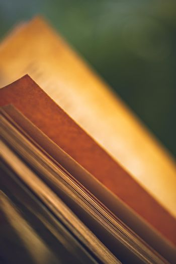 Grunge Style Closeup Photo of an Open Book. Rough Old Orange Pages of an Interesting Classical Novel. Leisure Time. Great Literature.